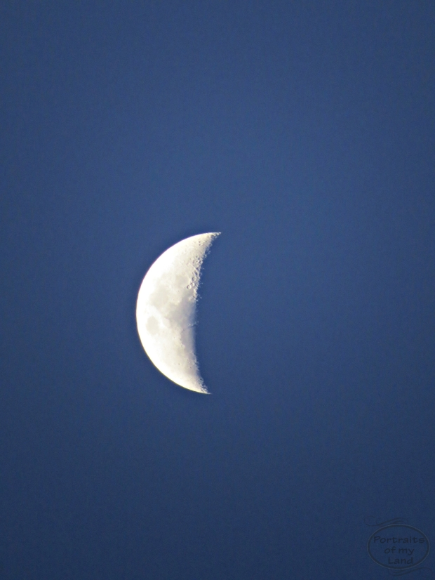 Portraits-of-my-land-late-afternoon-moon