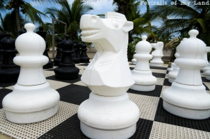 Portraits-of-my-Land-Chess-Board-3