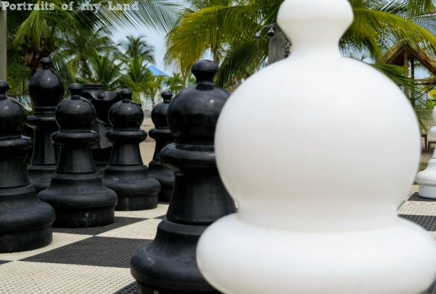 Portraits-of-my-Land-Chess-Board-4