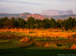 Earth-Day-Portraits-of-my-Land-9-India