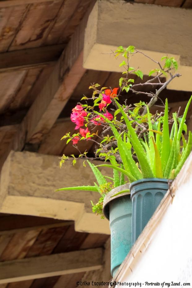 "<img scr=""URL de la imagen""A colorful Balcony""/>"