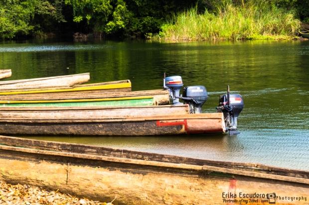 """<img scr=""""URL de la imagen"""" alt=""""Embera Tusipono Parque Nacional Chagres""""/>"""