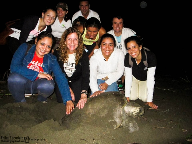 Isla-Canas-Turtle-Panama-Portraits-of-my-Land-1