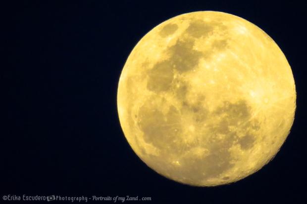 """<img scr=""""URL de la imagen"""" alt=""""Cheese Moon""""/>"""