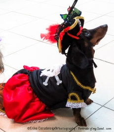 Dogoween-Portraits-of-my-Land-8